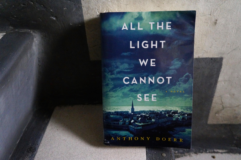 Novel All The Light